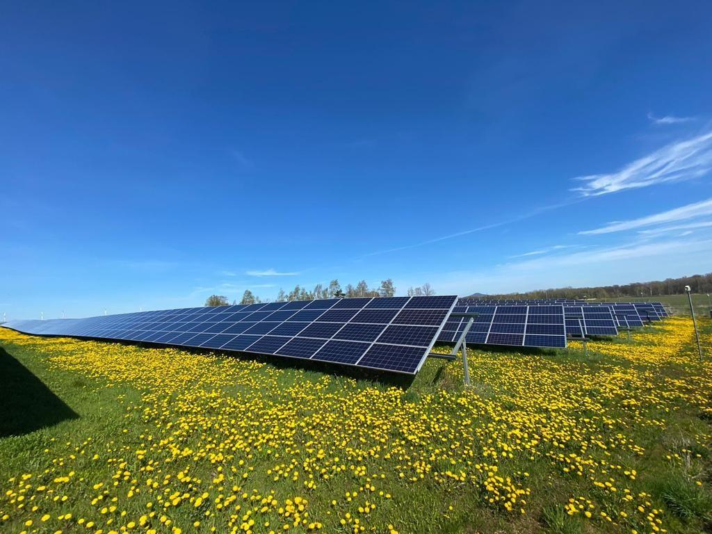 Rekordowa produkcja energii z farm fotowoltaicznych! Największa polska farma PV jest w stanie zasilić średniej wielkości miasto.